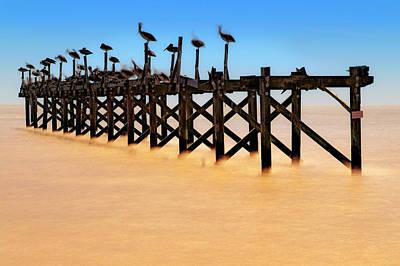 Photograph - Pelican Pier Near Pass Christian - Mississippi by Jason Politte