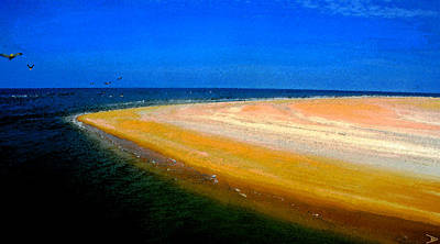 Painting - Pelican Point by David Lee Thompson