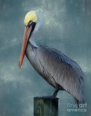 Photograph - Pelican Portrait by Benanne Stiens