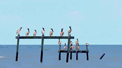 Photograph - Pelican Pow Wow by Susan Vineyard