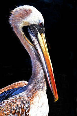 Photograph - Pelican Profile by Dennis Cox Photo Explorer