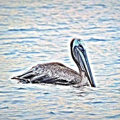 Painting - Pelican by Shelia Kempf