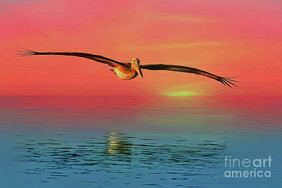 Painting - Pelican Sunset by Deborah Benoit