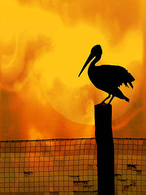 Net Painting - Pelican Sunset by Elaine Plesser