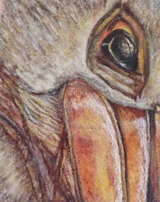 Pelican Original by Toni Willey