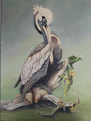 Pelican With Shells Art Print by Joan Taylor-Sullivant