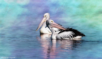 Digital Art - Pelicans 06187 by Kevin Chippindall