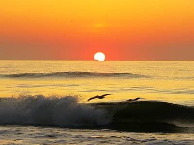 Photograph - Pelicans Across The Sunrise by Ellen Meakin