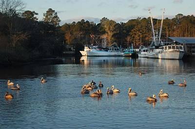 Digital Art - Pelicans And Shrimp Boats by Michael Thomas