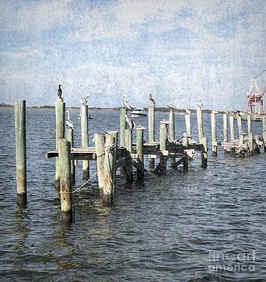 Photograph - Pelicans On Pilings by Luther Fine Art