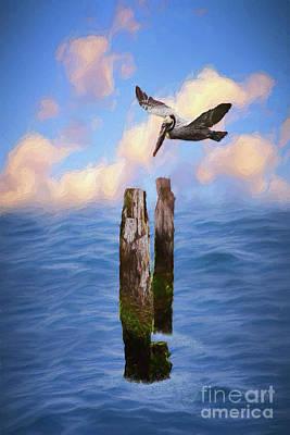 Digital Art - Pelicans On The Outer Banks Of North Carolina Ap by Dan Carmichael
