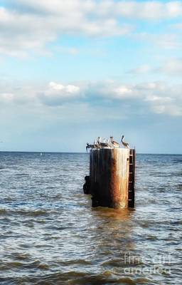 Photograph - Pelicans On The Piling  by Susan Bordelon