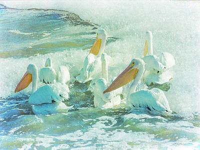 Pelicans On The Tide Art Print