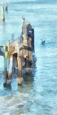 Digital Art - Pelicans On The Waterfront by Francesa Miller