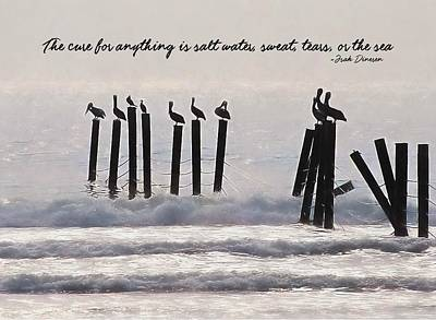Pelicans Perched Quote Art Print by JAMART Photography