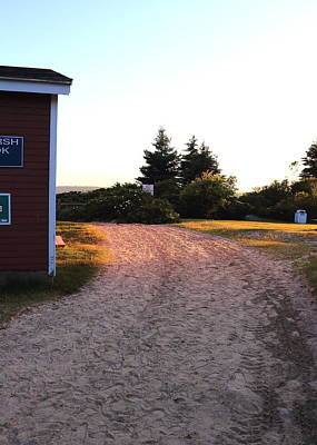 Pemaquid Beach Trail Art Print by Laurie Breton