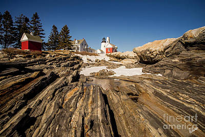 Photograph - Pemaquid Lighthouse And Snow by Alana Ranney