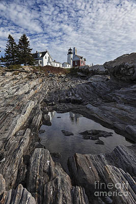 Pemaquid Lighthouse Photograph - Pemaquid Lighthouse by Timothy Johnson