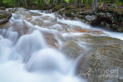 Photograph - Pemigewasset River - Franconia Notch State Park by Erin Paul Donovan