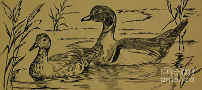 Photograph - Pen And Ink Drawing Of Ducks  by Ruth Housley