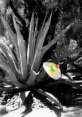 Photograph - Penca A La Mexicana by MikAn 'sArt