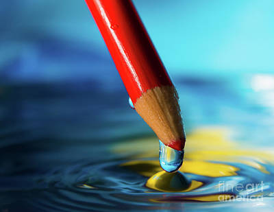 Photograph - Pencil Drip by Alissa Beth Photography