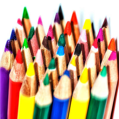 Brush Photograph - Pencils by Cristian Ghisla