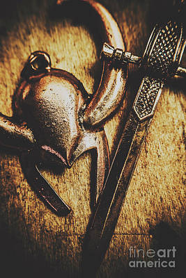 Photograph - Pendants From Old Norse  by Jorgo Photography - Wall Art Gallery