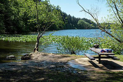 Photograph - Pending Picnic At Lake Padden by Tom Cochran