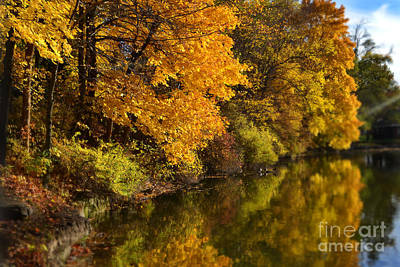 Indiana Photograph - Pendleton Falls Park Fall Reflections by Amy Lucid