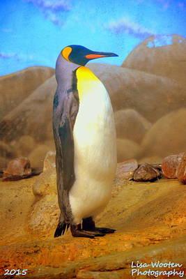 Photograph - Penguin by Lisa Wooten