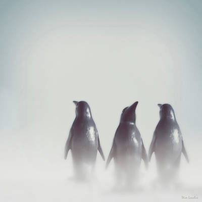 Penguins In The Mist Art Print by Wim Lanclus