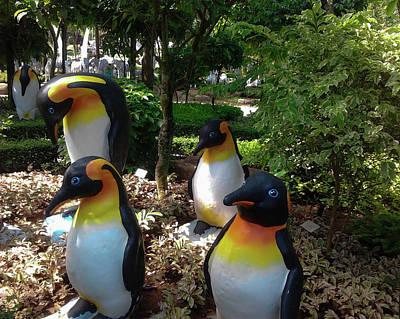 Penguins Photograph -  Penguins In The Tropics by Aleksei lomanov Barsuk