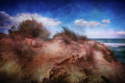 Pennington Bay Art Print by Anne Christie