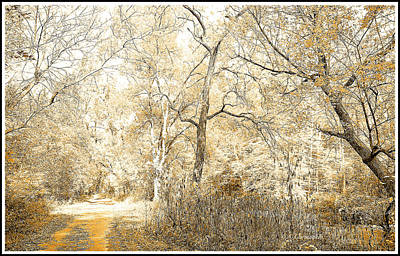 Pennsylvania Autumn Woods Art Print