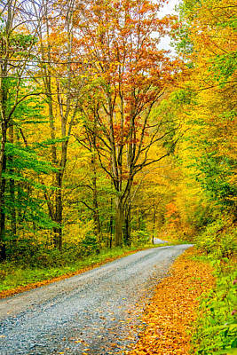 Oak Photograph - Pennsylvania Back Road by Steve Harrington
