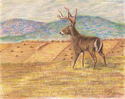 Painting - Pennsylvania Dawn by Joann Renner