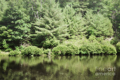 Photograph - Pennsylvania Forest Lake by Andrea Hazel Ihlefeld