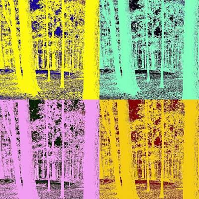 Pennsylvania Photograph - Pennsylvania Hardwood Forest by Hugh Smith
