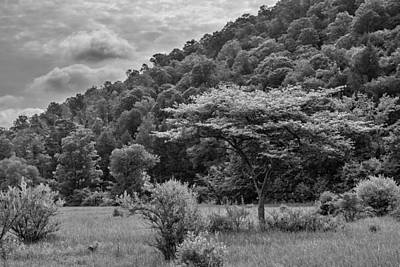 Photograph - Pennsylvania Hill Country by Guy Whiteley