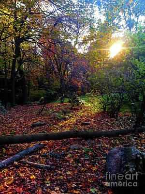 Wall Art - Photograph - Pennsylvania In Autumn by Elaine J Hoffman