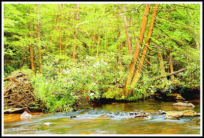 Digital Art - Pennsylvania Mountain Stream In Summer by A Gurmankin