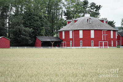 Photograph - Pennsylvania Round Barn Field by Andrea Hazel Ihlefeld