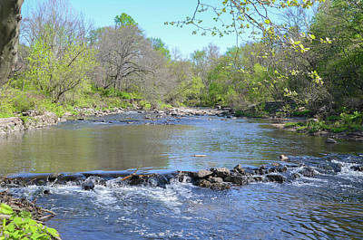 Pennypack Photograph - Pennypack Creek - Philadelphia by Bill Cannon