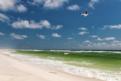 Photograph - Pensacola Beach by Victor Culpepper