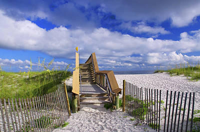 Photograph - Pensacola Sand Dunes Boardwalk by Marie Hicks