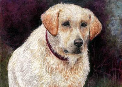 Drawing - Pensive Golden Retriever by Melissa J Szymanski