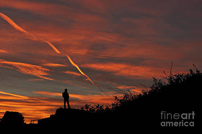 Photograph - Pensive Sunrise by Steve Purnell