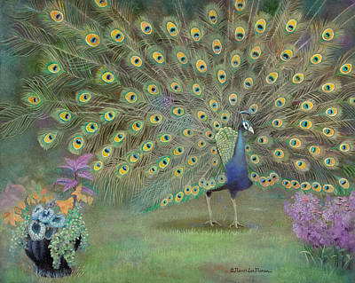 Penzance Peacock Original by Nancy Lee Moran