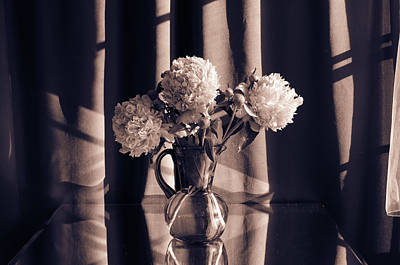 Wall Art - Photograph - Peonies #3 by Wendy Blomseth